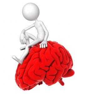 Ons brein is een complex orgaan